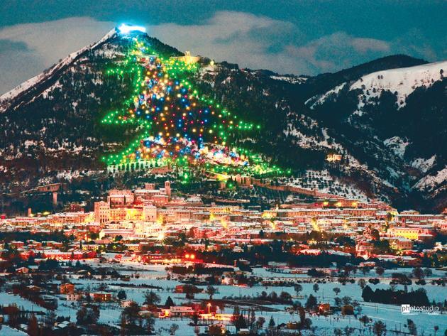 4116-christmas-tree-christmas-tree-small-town-gubbio-boasts-biggest-world