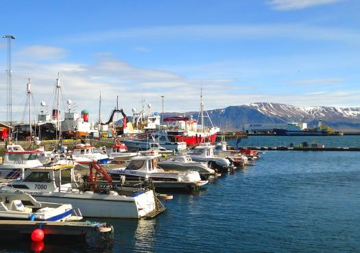 Harbor-in-Reykjavik.jpg