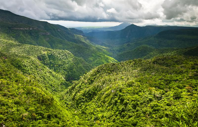 panorama-im-black-river-gorges-nationalpark-im-suedwesten-von-mauritius-der-fantastische-wanderwege-und-einen-der-seltensten-regenwaelder-der-welt-bietet.jpg